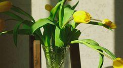 Kwiaty cięte w wazonie. Proste sposoby na przedłużenie ich świeżości