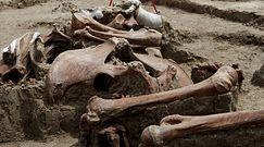 Cmentarzysko mamutów. Niezwykłe odkrycie na placu budowy lotniska