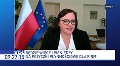 Pieniądze z UE zmienią układ sił. Polska stawia na krajową produkcję