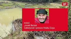 Bobry budują tamy. Zobacz nagranie z lasu w polskich górach