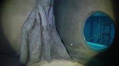 45 metrów i 43 centymetry głębokości. Niesamowity obiekt pod Warszawą