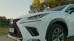 Lexus NX300h – od 7 lat na rynku i coraz popularniejszy. W czym tkwi sukces?