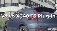 Volvo XC40 T5 TwinEngine - Miejski Samochód Roku Wirtualnej Polski 2020 - prezentacja zwycięzcy