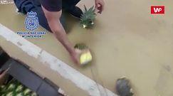 Kokaina znaleziona w ananasach