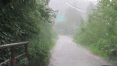 Ulewy w Bieszczadach. Nagranie z Nadleśnictwa Baligród