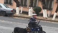 Pomaga pchać wózek. Nagrała przykład prawdziwej przyjaźni