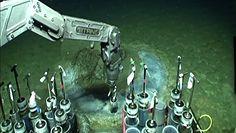 Toksyczne cmentarzysko na dnie oceanu. Przerażające odkrycie blisko Los Angeles