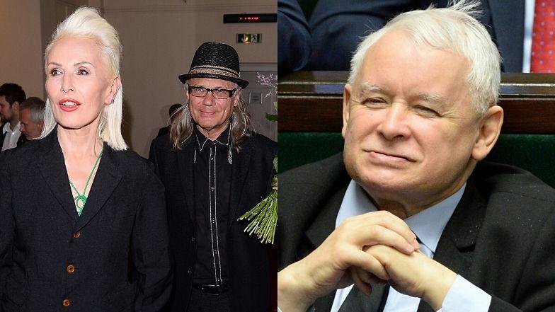 Kamil Sipowicz porównał Korę do Jarosława Kaczyńskiego.