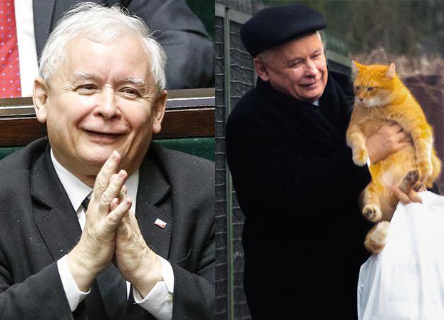 """Jarosław Kaczyński o kotce Fionie: """"Moja kotka aportuje winogrona"""""""