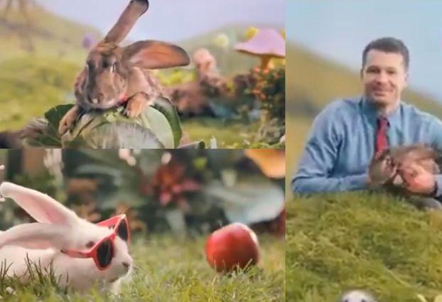 """Ministerstwo Zdrowia zachęca Polaków do... rozmnażania się jak króliki. """"To rozdzierająco smutne. Robi się z nas idiotów!"""""""