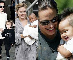 Angelina Jolie sama zaadoptuje SIÓDME dziecko?