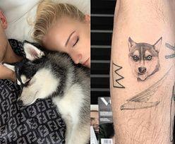 Joe Jonas i Sophie Turner stracili psa. Para upamiętniła zmarłego pupila tatuażami (FOTO)