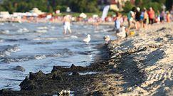 Niepokojące prognozy na wakacje. W Bałtyku szykuje się duży zakwit sinic