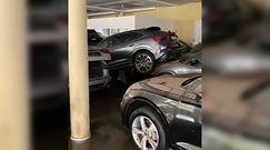 Dramatyczne skutki powodzi w Niemczech. Wnętrze luksusowego salonu samochodowego