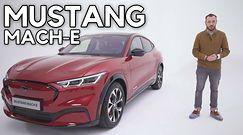 Mustang Mach-E - Czy to jeszcze jest Mustang?