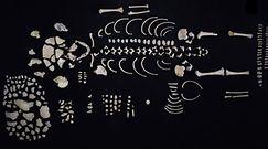 Skarbnica historii Majów. Wielkie odkrycie w Gwatemali