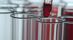 Chemikalia u kobiet w ciąży. Przerażające, co odkryli w ich krwi