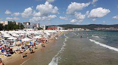 """Bułgaria """"paragonowym rajem"""". Tani kierunek na wakacje 2021"""