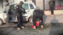 Akcja CBŚP. Zatrzymanie członków gangu, który napadł i okradał prostytutki
