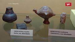 Niektóre mają nawet 4000 lat. Niesamowite odkrycie Polaków