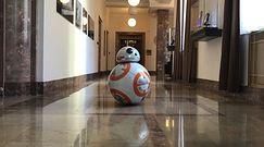 """Robot BB-8 z """"Gwiezdnych wojen"""". Zrobiła go polska studentka"""