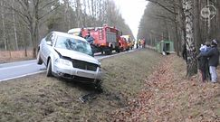 Ciężarówka ze świniami wpadła do rowu