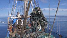 Misja oczyszczania oceanu. Wydobyto ponad 100 ton śmieci