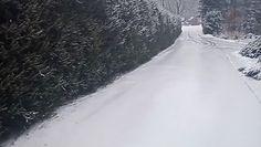 Powrót srogiej zimy w Polsce. Nagranie z trudnej sytuacji w Bieszczadach