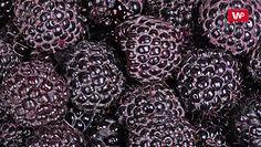 Czarne maliny podbijają polskie stoły. Ograniczają rozwój raka