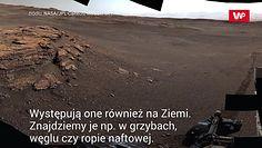 Życie na Marsie. Przełomowe odkrycie NASA