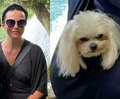 Adam Małysz z żoną i uroczą psinką pozdrawiają z wakacji w Chorwacji (FOTO)