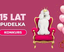 Trwa urodzinowy konkurs Pudelka. Weź udział i wygraj wyjątkowe pudelkowe gadżety!