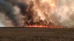 Biebrzański Park Narodowy w ogniu. Płonie największy rezerwat w Polsce