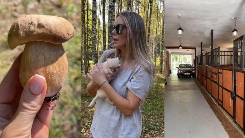 """Małgorzata Rozenek oprowadza fanów po włościach swoich rodziców: """"RAJ NA ZIEMI! ŻAŁUJĘ, że jeżdżę po świecie, zamiast tu być"""" (ZDJĘCIA)"""