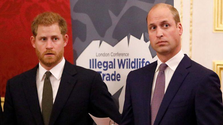 """Konflikt Williama i Harry'ego stał się inspiracją do KSIĄŻKI! """"Problemy w ich relacjach PORUSZYŁY MNIE DO ŁEZ"""""""