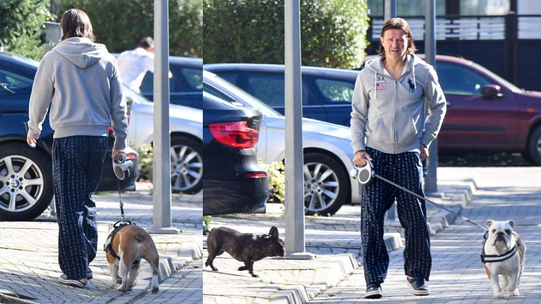 Spacer z psami
