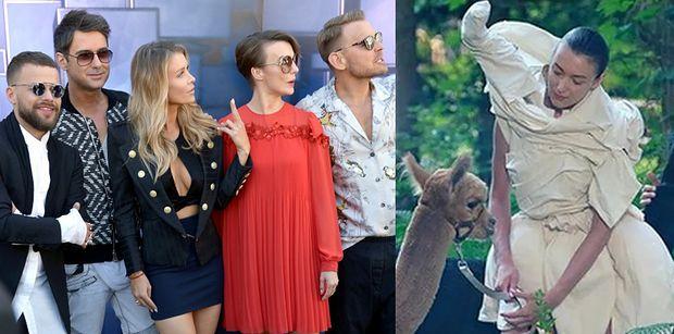 """Właścicielka alpak ujawnia, co działo się na planie """"Top Model"""": """"Zwierzęta miały DOSYĆ"""""""