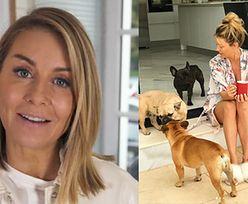 """""""Poznaj mojego psa""""! Małgorzata Rozenek ujawnia: """"Psy są dla nas TAK SAMO WAŻNE, JAK DZIECI"""""""