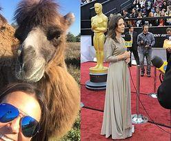 """Rusin jedzie na rozdanie Oscarów. """"Na jedno miejsce było 60 chętnych!"""""""