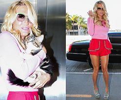 Kesha z kotem na lotnisku... Seksowna? (ZDJĘCIA)