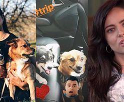 """""""Poznaj mojego psa""""! Gabi Drzewiecka czule o pupilach: """"To moje futerkowe dzieci"""""""