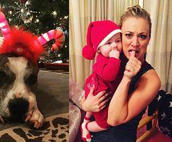 Celebryci przebrali swoje zwierzęta w Święta (ZDJĘCIA)