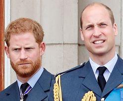 """Książę William zwołał SPOTKANIE NA SZCZYCIE w sprawie wybryków Harry'ego! """"Ma już znaczną władzę w rodzinie"""""""