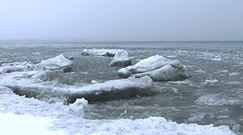 Katastrofa klimatyczna na Oceanie Arktycznym coraz bliżej.  Przerażające prognozy naukowców