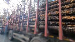 Szczecin. Niebezpieczne przewożenie drewna