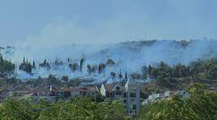 Pożary w Czarnogórze i Macedonii Północnej. Aresztowano potencjalnych podpalaczy