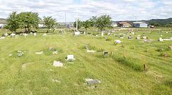 """Kolejny masowy grób Indian w Kanadzie. """"Oczekujemy przeprosin papieża i Kościoła"""""""