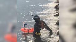 Nurek z ośmiornicą na plecach. Nagranie z Hiszpanii
