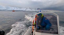 Niezapomniane spotkanie. Z orkami po wodach Arktyki
