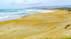 Piasek odsłonił starożytny skarb na plaży. Zaskakujące odkrycie w Izraelu